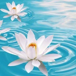 6 июня — Гуру-Пушья-йога